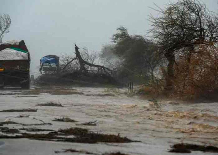 india, fallecidos, tifon tauktae, meteorologia,