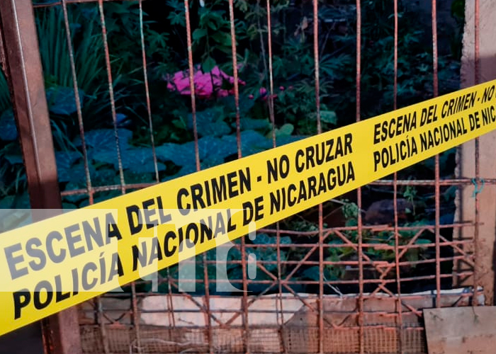 Nicaragua, managua, hombre, electrocutado, aguacates,