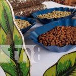 Nicaragua, nueva segovia, Subasta Internacional del Café, record