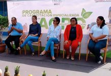 nicaragua, inatec, mefcca, programa, agroindustria