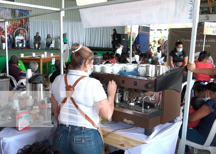 nicaragua, matagalpa, expo feria, cafe,