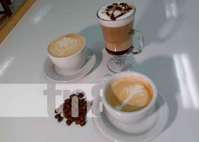nicaragua, matagalpa, san isidro, escuela de catacion, barismo, cafe,