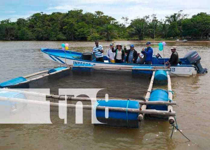 nicaragua, laguna de perlas, pescadores, jaulas de crianza