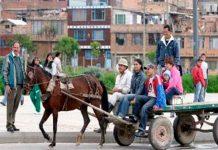 colombia, prohibicion, actividades, carretas, carruaje, caballos, animales,
