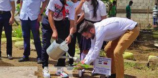 nicaragua, arboles, siembra, venezuela, colegio,