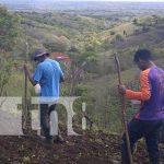 nicaragua, cultivo, nandaime, siembra, lluvias, campesinos,