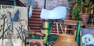 nicaragua, bambu, madera, feria, emprendimiento,