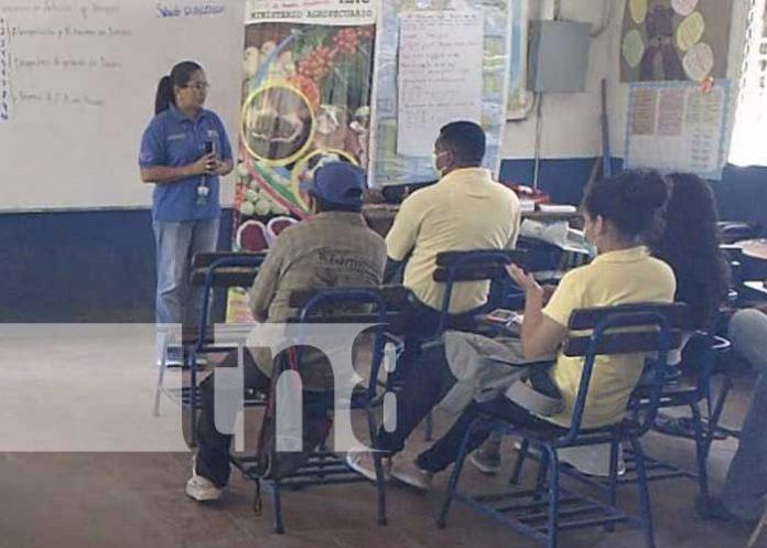 nicaragua, nandaime, inseminacion artificial, bovino, curso,