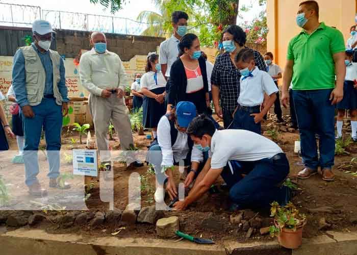 nicaragua, unicef, medio ambiente, mined, jornada de siembra,