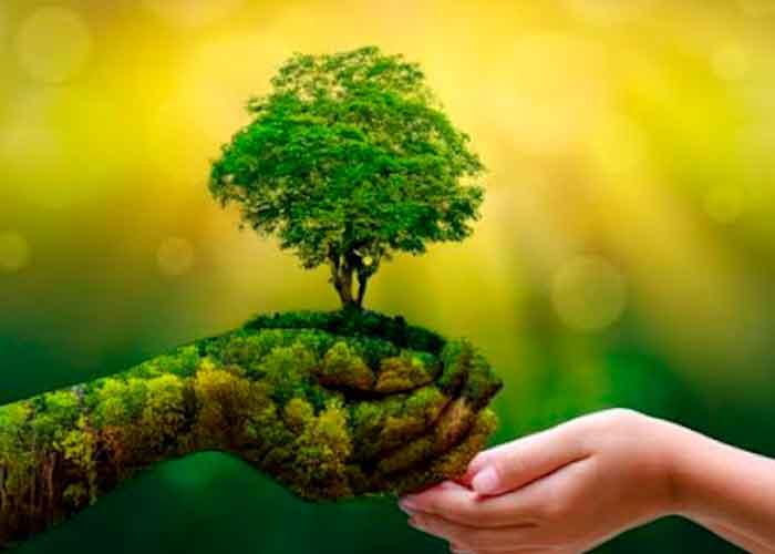 Reimagina, recupera, restaura, Medio Ambiente, Día Mundial,