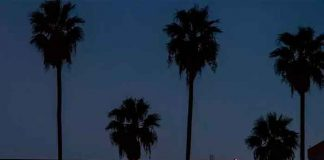 cine, tienda online, netflix, series, peliculas, productos, california,