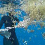 onu, oceanos, medio ambiente, contaminacion,