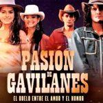 cine, telenovela, pasion de gavilanes, elenco,