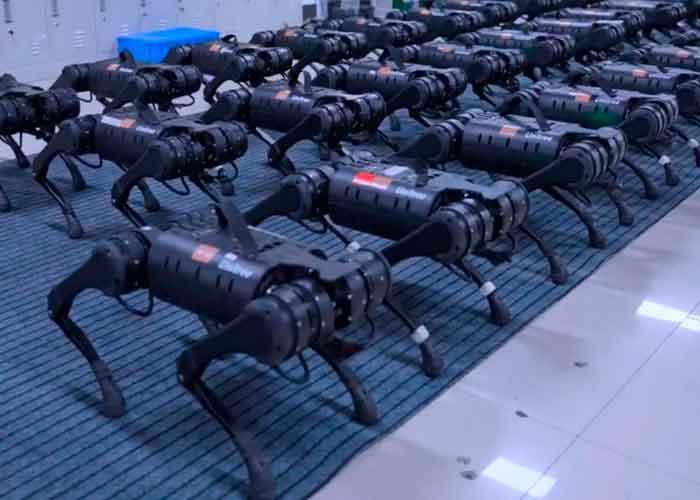 China, tecnología, robots, perro, acompañante,