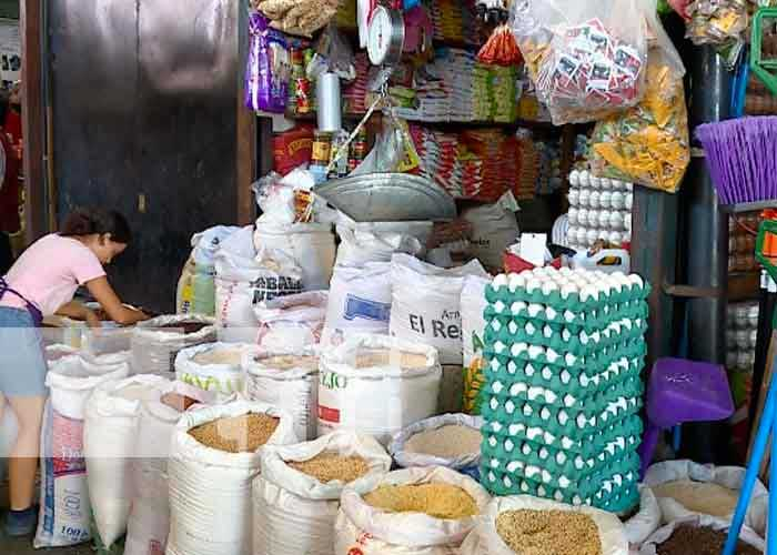 nicaragua, canasta basica, mercado, precios, mific,