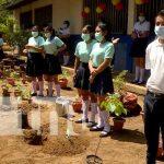 nicaragua, siembra, arboles, asamblea, colegio,