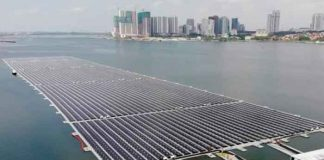 ciencia, singapur, plantas flotantes, energia solar, superficie