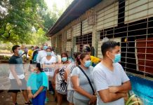 nicaragua, managua, verificacion ciudadana,