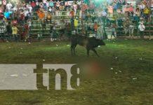 nicaragua, nandaime, toro, sucesos,