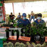 nicaragua, Bluefields, innovación,