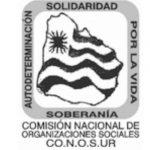 nicaragua, politica, conosur, campañas sucias, injerencia