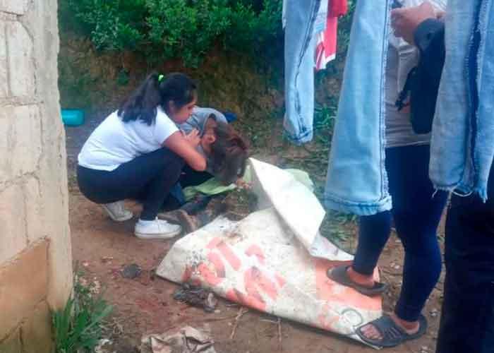 ¡Feroz ataque! Perro Pitbull mata a niño de tres años en México