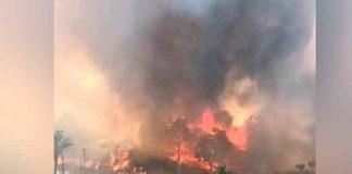 incendio forestal en Turquía