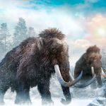 mamuts, mastodontes, extinguieron, cambio climático,