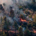 Incendio forestal al norte de Atenas