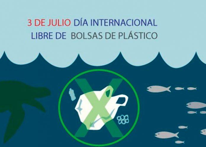bolsas, recicla, dia internacional, plástico,