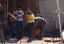 Foto: Eugenio Derbez pide justicia por perro asesinado en México / Infobae