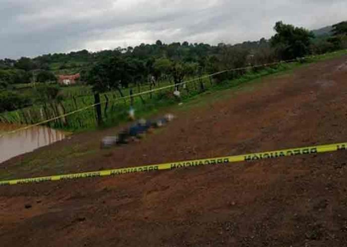Hallan cinco cadáveres apilados en Michoacán, México