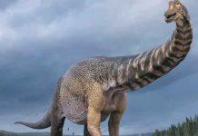 dinosaurio, españa, autobús, gigantesco,