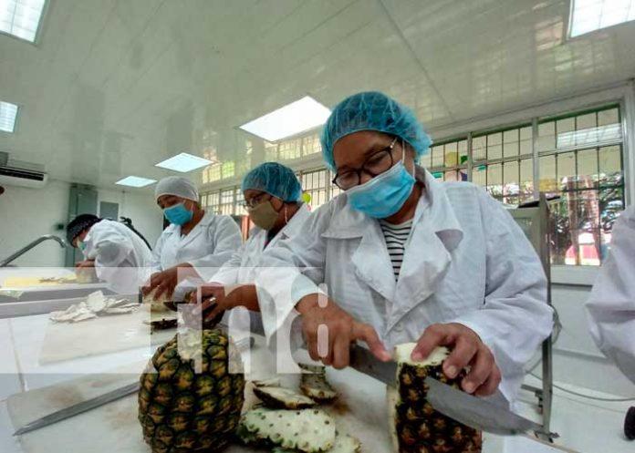 Emprendedores de Chinandega reciben curso de Agroindustria