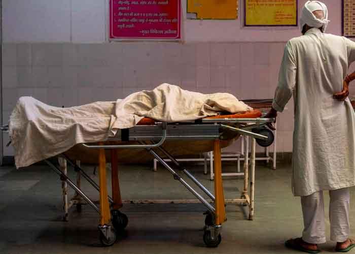 Foto: India confirma la primera muerte humana por gripe aviar/Referencia