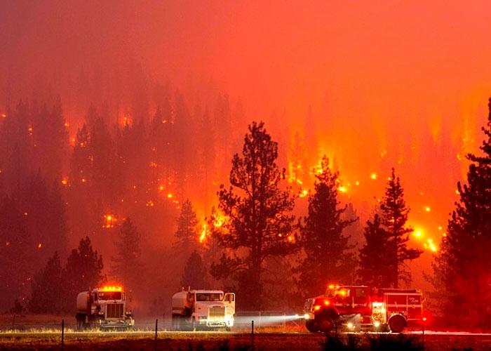 Debido a las altas temperaturas, las llamas grandes y pequeñas, azotan varias hectáreas del continente europeo llegando casi hasta Rusia