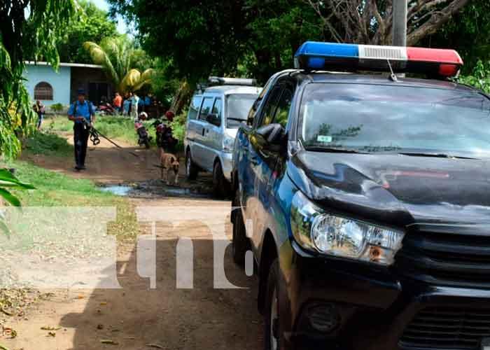 Despiadado hombre mató a su cónyuge con una barra metálica en León / FOTO / TN8