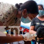Inicia jornada de vacunación canina en Masaya