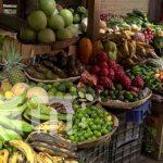 Foto: Destacan abastecimiento en los mercados / TN8