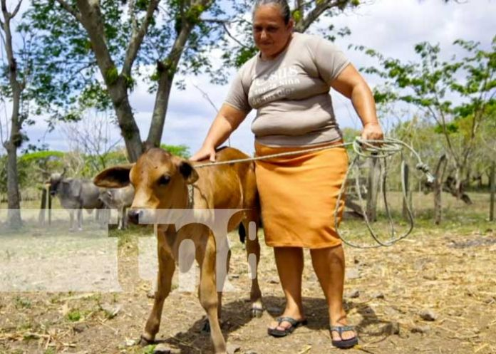 Mujer trabajadora del campo en Nicaragua