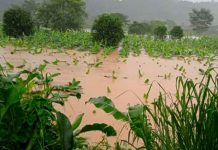 Foto: Ondas tropicales deja múltiples daños en Panamá/Referencia