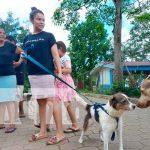 El MINSA desarrollo una jornada de vacunación canina, en los chiles municipio San Carlos del departamento Río San Juan