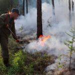 Foto: Rusia utiliza aviones militares para combatir incendios/Cortesía