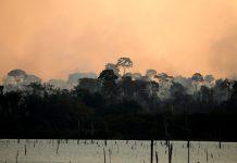 Un incendio calcinó un área de la selva amazónica cerca del río Jamari en el estado de Rondonia, el 11 de septiembre de 2019 / Bruno Kelly / Reuters
