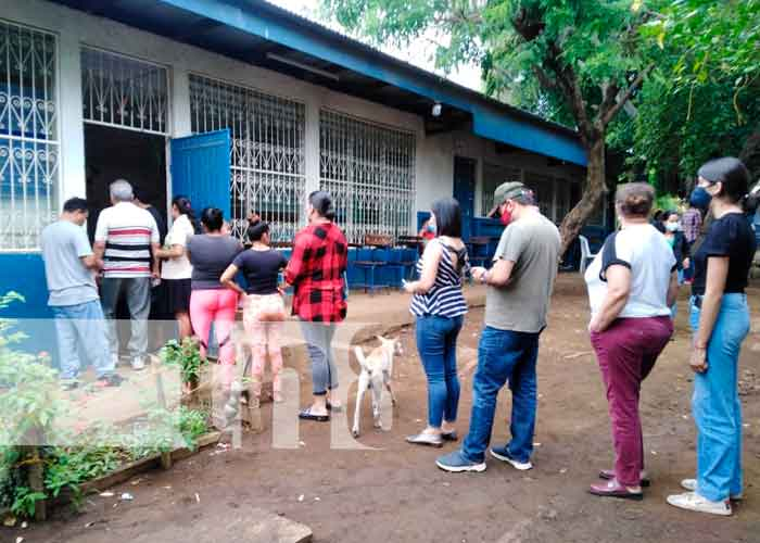 Personas de la tercera edad son prioridad en verificación en Nicaragua