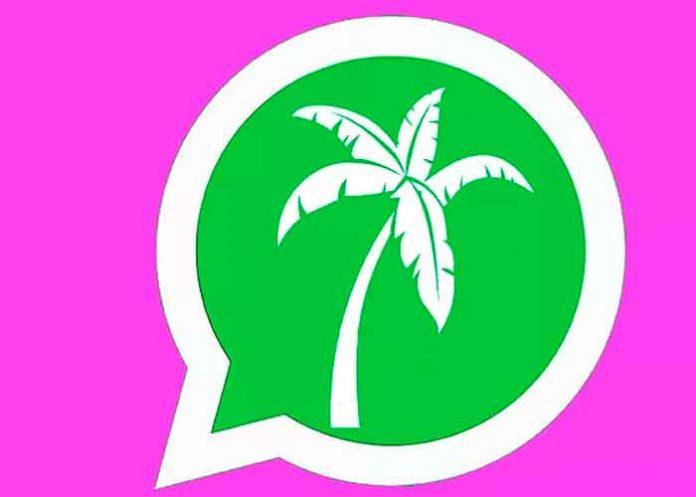 ¿Ya sabés cómo se activa el modo vacaciones WhatsApp? / FOTO / El Mundo