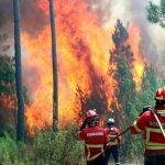 Bomberos combaten importante incendio en el sur de Portugal