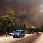 grecia, incendio, afectaciones, hectareas, muertos