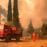 europa, italia, ola de calor, incendio, afectaciones