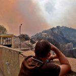 argelia, incendios, fallecidos, afectaciones, temperaturas altas